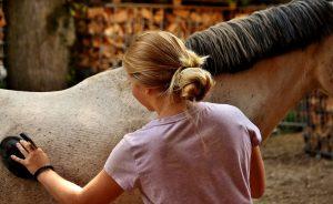 5 tips voor een schone en gezonde vacht